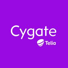 Bild på Cygate Hosted VMware
